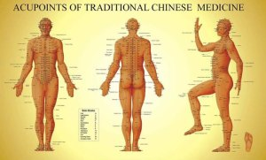 Chinese_meridians